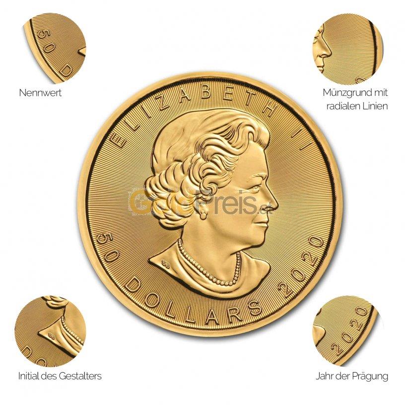 Goldmünze Maple Leaf - Details des Avers