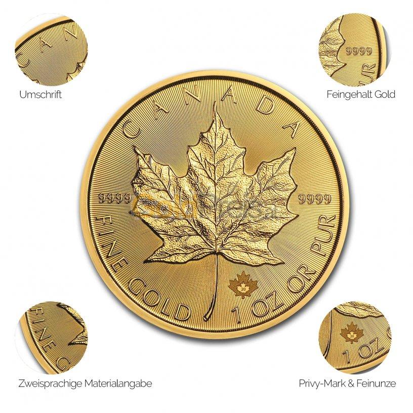 Goldmünze Maple Leaf - Details des Revers