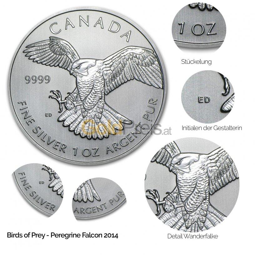 Details der Silbermünze Birds of Prey: Peregrine Falcon