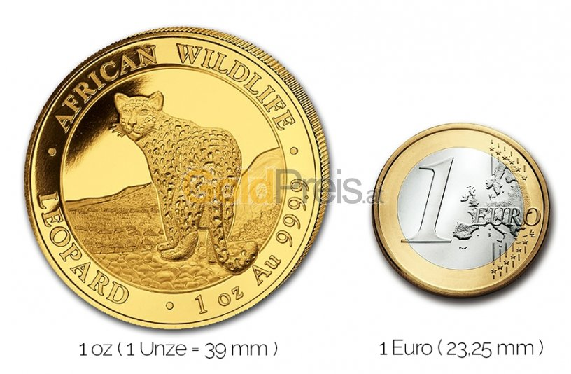 Größenvergleich Somalia Leopard Goldmünze mit 1 Euro-Stück